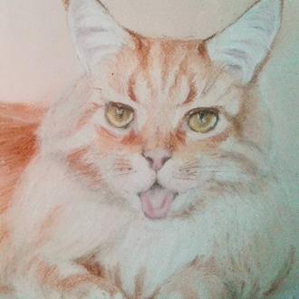 """Портрет кота сухой пастелью на заказ. """"Мэй"""""""
