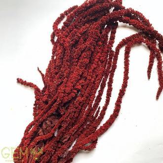 Амарант Красный