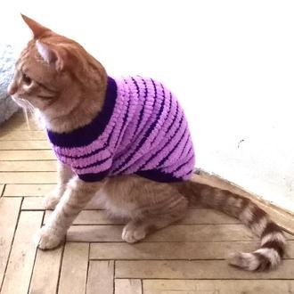 Плюшевый свитер для кота фиолетовый