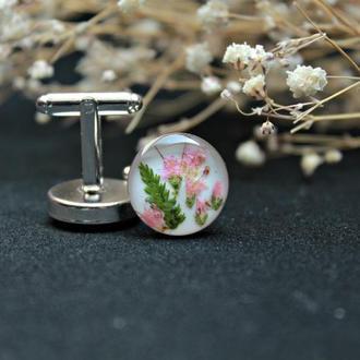 Запонки с цветами розовой вероники