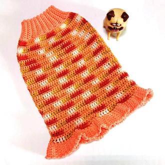Платье для собаки Календула