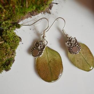 Сережки «Зачарований ліс»