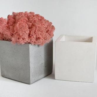 Куб из бетона с розовым мхом