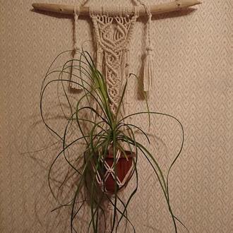 Підвісне кашпо для кімнатних рослин на дерев'яній гілці з декоративними пензликами