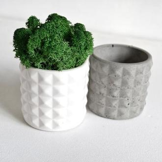 Кашпо из бетона цилиндр с мхом, скандинавский мох в горшке. Подарок на день матери.