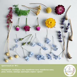 Сухоцветы для украшений из смолы Гербарий Маленькие цветы (Цветочный сет №1) Dry Flowers