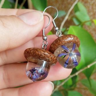 Сережки-жолуді з пролісками в епоксидній смолі