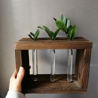 Ваза для цветов. Деревянная подставка со стеклянными пробирками, для цветов.
