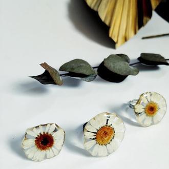 Кольцо с натуральной ромашкой в ювелирной смоле на регулируемой основе.
