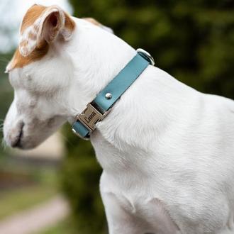 Ошейник для собаки из натуральной кожи, на выбор 14 цветов и 4 размера 0184