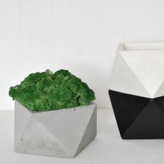 """Горшок из бетона """"Four sides""""  и стабилизированный мох. Кашпо с мхом."""