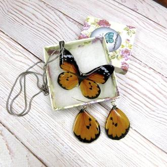 Набор украшений бабочки