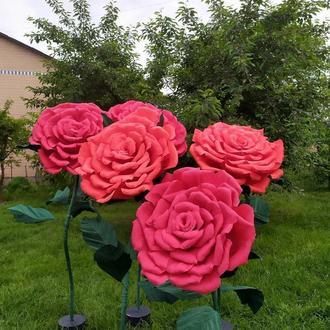 Ростова червона троянда