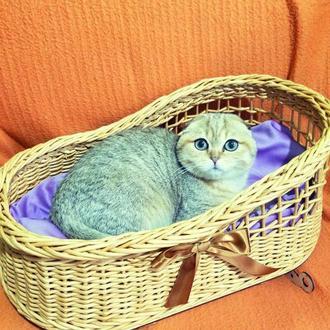 Плетеные изделия для животных