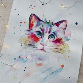 Рисунок акварелью Кот