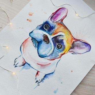 Рисунок акварелью Собачка