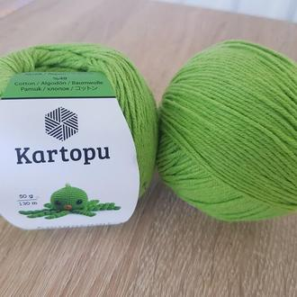 Пряжа Kartopu зеленый К1390