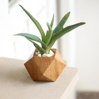 Вазон из дерева дуба.Кубический вазон для суккулентов и кактусов. Декор в дом.Подарок маме.