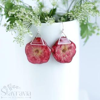 Сережки з червоно - малиновими трояндами • Серьги с розами в эпоксидной смоле