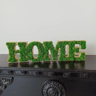 Деревянные Буквы home со стабилизированным мхом