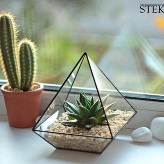 Флорариум пирамида №2 mini + набор для посадки + доставка