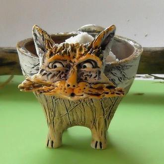 Солонка кот Солонка котик сувенир для кухни
