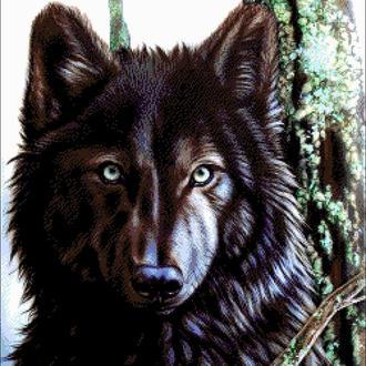 """Набор для вышивки бисером """"Канадский волк"""""""