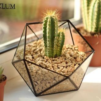 """Горшок для кактусов и суккулентов №7 mini + набор """"Все для посадки"""""""