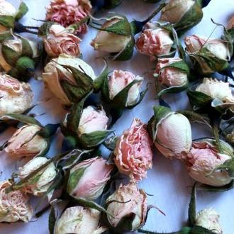 Сухоцвет. Розы мини в бутонах розовые. Набор 50шт.