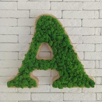 Буква, буквы из мха для декора, логотип из мха, название из мха