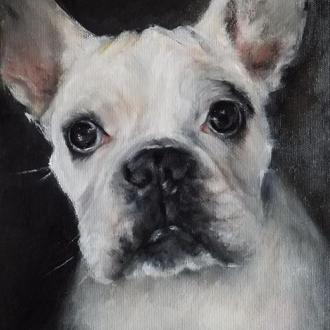 Портрет собаки на заказ Портрет питомца Портрет животного