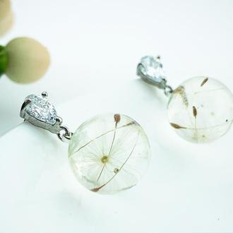 Миниатюрные  серьги с пушинками одуванчика  Цветы и растения в смоле (модель № 2586) Glassy Flowers