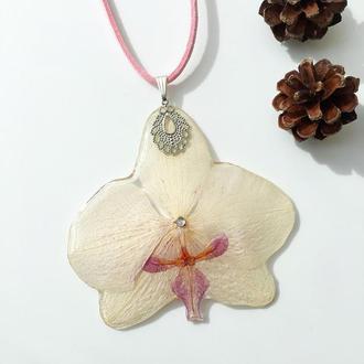 Ніжний кулон з орхідеєю фаленопсис💛