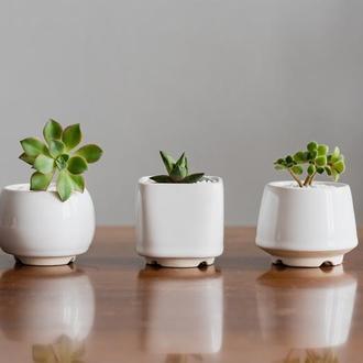 Белый керамический горшок для кактусов, суккулентов, размер М