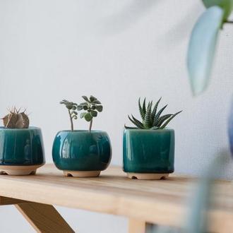 Бирюзовый керамический горшок для кактусов, суккулентов, размер М