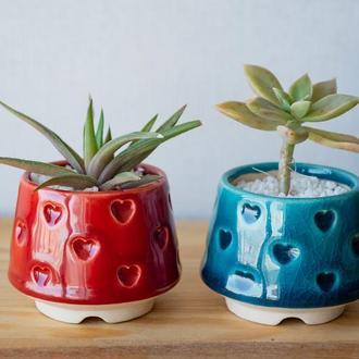 Красный керамический горшок для кактусов, суккулентов, коллекция Сердца
