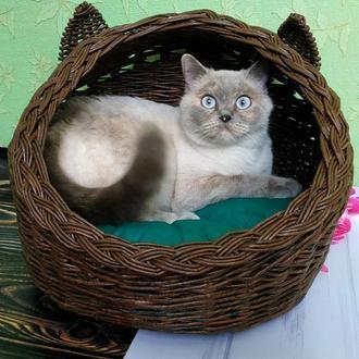 Домик для кота или маленькой собачки
