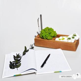 Органайзер для канцелярии 2.0 со скандинавским мхом, салатовый