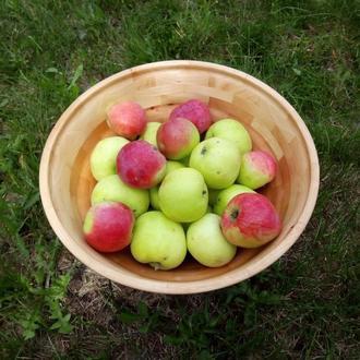 Сегментная ваза из ольхи для фруктов, конфетница из дерева.