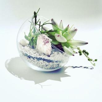 Флорариум в шаре, полусфера «Пруд с водяными лилиями»