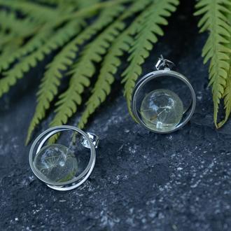 Круглые серьги с шариком из эпоксидной смолы с семенами одуванчика