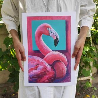 Красочный постер с авторской иллюстрацией. Туканы.