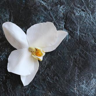 Орхидея. Шпилька. Заколка. Холодный фарфор. Цветы в волосы.  Украшение для прически.