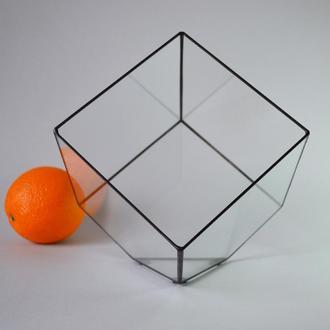Флорариум № 7 - Куб ХL