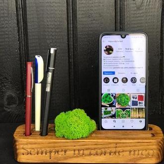 Органайзер для ручек и телефона с стабилизированным мхом