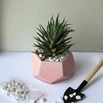 Бетонний горщик кашпо для квітів сукулентів кактусів 5*10см / Бетонные кашпо из бетона для цветов B1