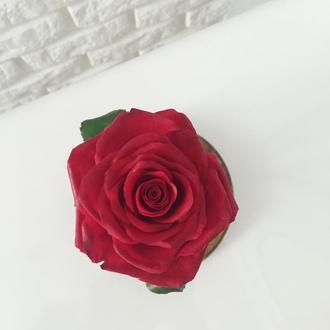 Роза под стеклянным клошем