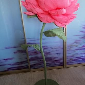 Большой пион из бумаги. Ростовой цветок на стебле. Пион из итальянской креп бумаги