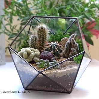 Флорариум с кактусами 20*19 см
