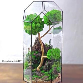 Флораріум зі стабілізованим мохом, діаметр -26 см, загальна висота-45 див.